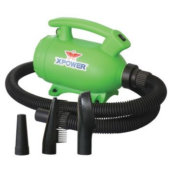 XPOWER B-55 Green B-55 Portable Home Pet Grooming Force Hair Dryer and Vacuum (Green)