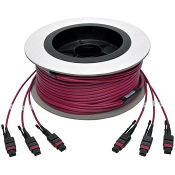 Tripp Lite N858-23M-3X8-MG MTP/MPO MultiMode Base-8 Trunk Cable 23 M